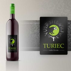 Turiec logo